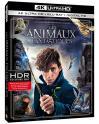 Les Animaux fantastiques - Le monde des Sorciers Blu-ray 4K + Blu-ray à 11.36€ au lieu de 19.99€ @ Amazon